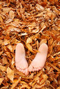 Childs feet  buried in fall leaves Stock Photos