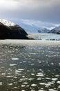 Chile amalia glacier in a cloudy day dramatic landscape skua bernardo o higgins national park Royalty Free Stock Photos