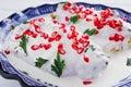 Chiles en Nogada Mexican Cuisine spicy food in Puebla Mexico Royalty Free Stock Photo