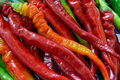 Chili pepper colorful in line for selling in super market shown as original and raw vegetable or agriculture concept Royalty Free Stock Images