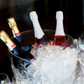 Chilled champagne bottle of in ice Royalty Free Stock Photos