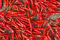 Chilli dehydrate Stock Photos
