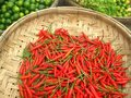 Chilli and lemon baskets Stock Photography