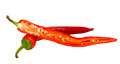 Chilli pepper cut Royalty Free Stock Photos