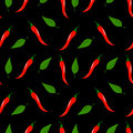 Chilli peppers seamless pattern vector illustration Stock Images
