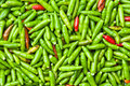 Chillies background Stock Image