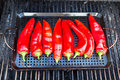 Chillies getting ready to be grilled on the grill Royalty Free Stock Image
