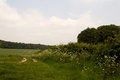 Chilterns landscape in buckinghamshire england view over the Stock Photos