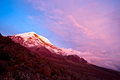 Chimborazo volcano ecuador sunset on the mighty s highest summit Royalty Free Stock Photo