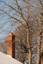 Chimney brick in winter with trees and blue sky Royalty Free Stock Images