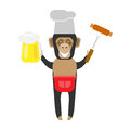 Chimp chef barbecue illustration of a on a white background Royalty Free Stock Photo
