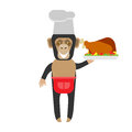 Chimp chef with bird illustration of a on a white background Stock Photo