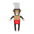 Chimp chef illustration of a on a white background Royalty Free Stock Image