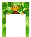 Chimpanzee and blank white sign Royalty Free Stock Photo