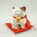 China fortune cat a white Stock Photos
