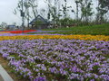 China jinzhou international horticultural exposition-flower exhibition park has nearly exhibition park every variety of arts and Stock Photography