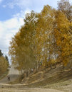 China/xinjiang: autumn in hemu and some travelers Royalty Free Stock Photos