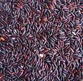 Chinese Black Rice Royalty Free Stock Photo