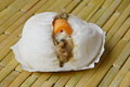 Chinese bun filling cheese sausage and minced pork fusion food when east meet west Royalty Free Stock Photo