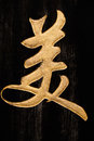 Chinese character Royalty Free Stock Photo