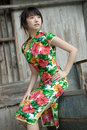 Chinese cheongsam model Stock Photo