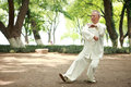 Chinese do taichi outside Stock Images