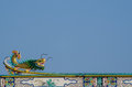 Chinese dragon gold statue on roof Stock Photo
