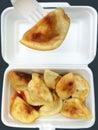 Chinese dumpling takeaway Royalty Free Stock Photo
