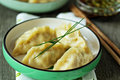 Chinese dumplings with ground chicken Royalty Free Stock Photo