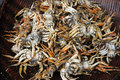 Chinese fried crab market Royalty Free Stock Photo