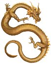 Chinese Gold Dragon Stock Photo