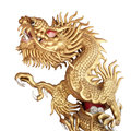 Chinese golden dragon sculpture sculptur on isolated white background Royalty Free Stock Image