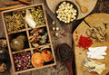 Chinese herbal medicine and flower tea Royalty Free Stock Image