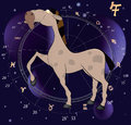 Chinese horoscope year of horse cartoon on dark blue a background with signs Stock Image