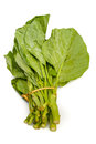 Chinese kale vegetable on white background Stock Photo