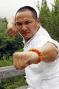 Chinese Kung Fu Royalty Free Stock Photography
