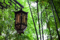 Chinese lamp in bamboo park Stock Image