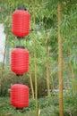 Chinese lantern 库存图片