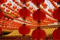 Image : Chinese lanterns physalis made in