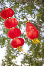 Chinese lanterns Royalty Free Stock Photo