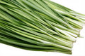 Chinese leek Stock Photo