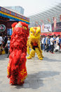 Chinese lion dancing the th china food and drinks fair chengdu march th th Royalty Free Stock Image