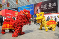 Chinese lion dancing the th china food and drinks fair chengdu march th th Stock Photography