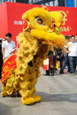 Chinese lion dancing the th china food and drinks fair chengdu march th th Stock Image