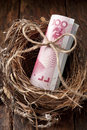 Chinese nest egg money a with a roll of yuan on a wood background Stock Photo
