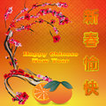 Chinese New Year Card Plum Royalty Free Stock Images