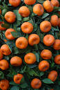 Chinese New year fruit - tangerines Royalty Free Stock Photo