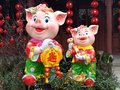 Chinese New Year The pig year auspicious Royalty Free Stock Photo