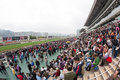 Chinese New Year Raceday in Hong Kong Stock Photos