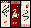 Chinese New Year of the Snake Royalty Free Stock Photos